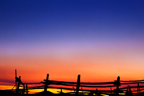 fence post sunset