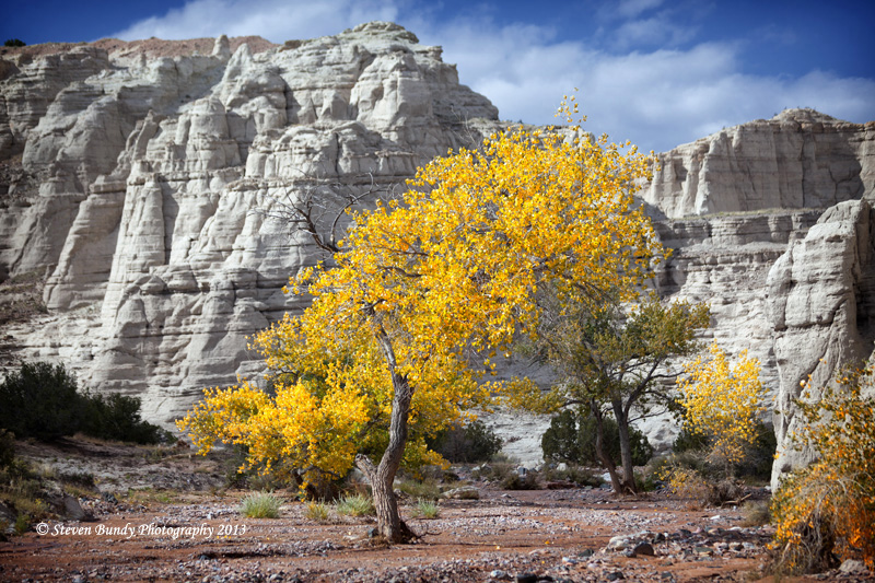 Fall Colors at Plaza Blanca – Abiquiu, NM – 2013