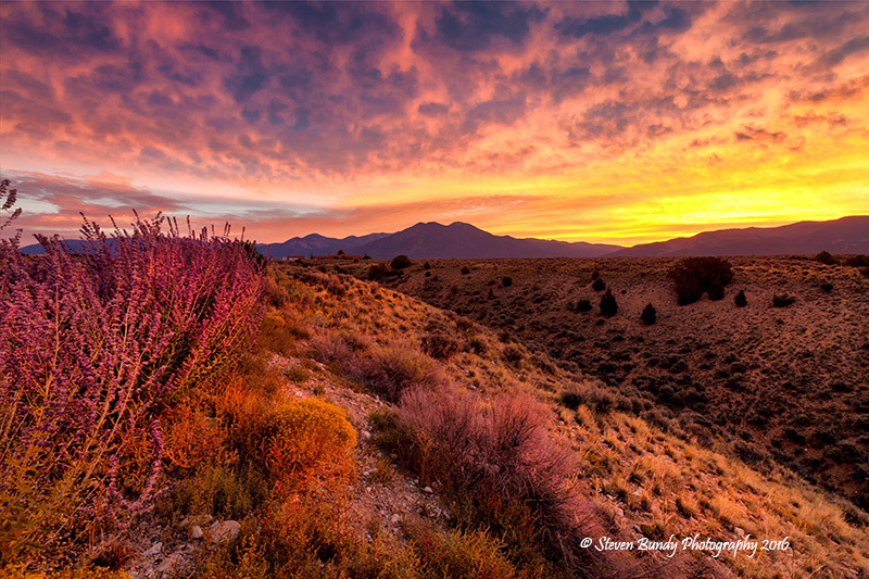 Nighthawk Sunrise – Taos, NM – 2016