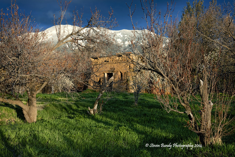 Old Grove Ruin – Arroyo Seco, NM – 2014