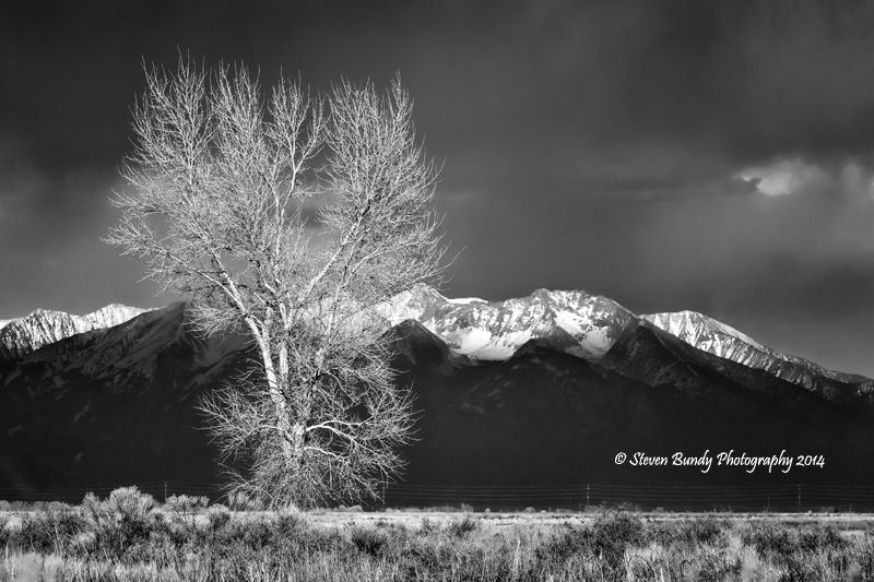 Rocky Mountain View – Alamosa, CO – 2014