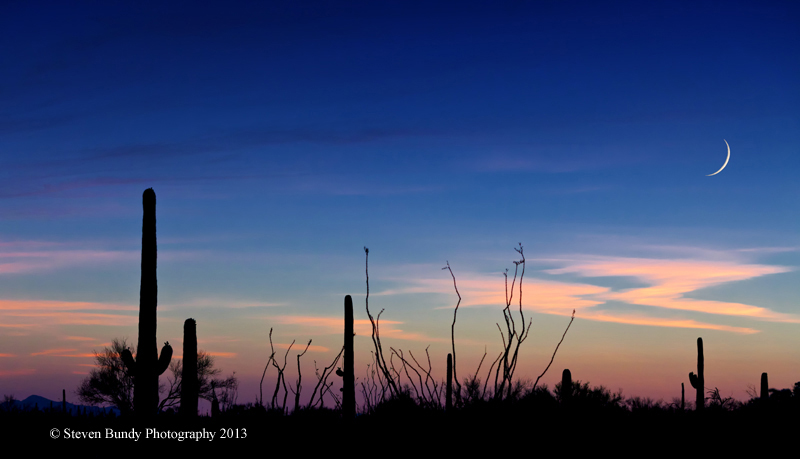 Saguaro Moon – Tucson, Arizona – 2013